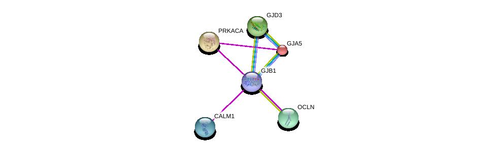 http://string-db.org/version_10/api/image/networkList?limit=0&targetmode=proteins&caller_identity=gene_cards&network_flavor=evidence&identifiers=9606.ENSP00000354900%0d%0a9606.ENSP00000271348%0d%0a9606.ENSP00000336832%0d%0a9606.ENSP00000309591%0d%0a9606.ENSP00000347379%0d%0a9606.ENSP00000349467%0d%0a