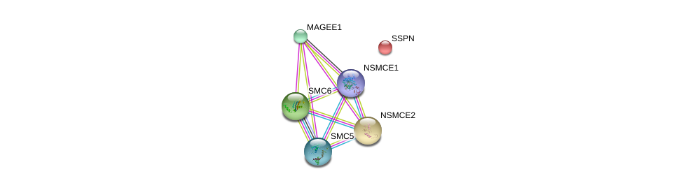 http://string-db.org/version_10/api/image/networkList?limit=0&targetmode=proteins&caller_identity=gene_cards&network_flavor=evidence&identifiers=9606.ENSP00000354912%0d%0a9606.ENSP00000287437%0d%0a9606.ENSP00000323439%0d%0a9606.ENSP00000355077%0d%0a9606.ENSP00000354957%0d%0a9606.ENSP00000242729%0d%0a