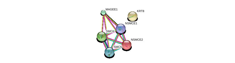 http://string-db.org/version_10/api/image/networkList?limit=0&targetmode=proteins&caller_identity=gene_cards&network_flavor=evidence&identifiers=9606.ENSP00000354912%0d%0a9606.ENSP00000287437%0d%0a9606.ENSP00000323439%0d%0a9606.ENSP00000355077%0d%0a9606.ENSP00000354957%0d%0a9606.ENSP00000293308%0d%0a