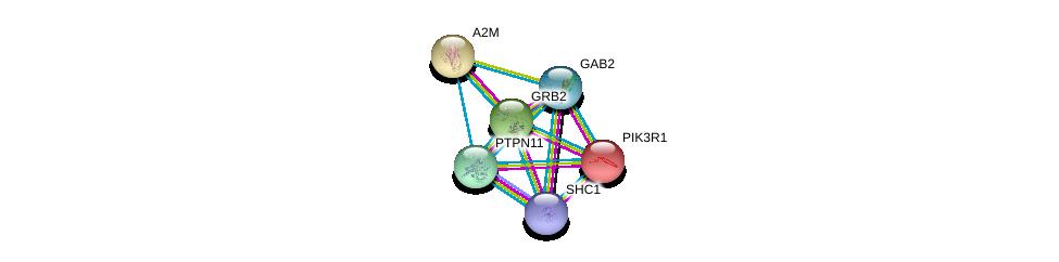 http://string-db.org/version_10/api/image/networkList?limit=0&targetmode=proteins&caller_identity=gene_cards&network_flavor=evidence&identifiers=9606.ENSP00000354952%0d%0a9606.ENSP00000339007%0d%0a9606.ENSP00000340944%0d%0a9606.ENSP00000274335%0d%0a9606.ENSP00000401303%0d%0a9606.ENSP00000323929%0d%0a