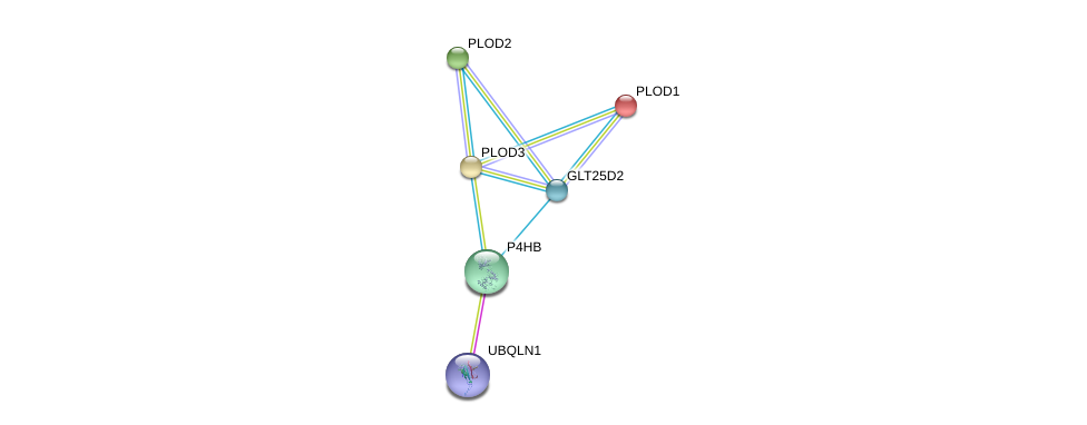 http://string-db.org/version_10/api/image/networkList?limit=0&targetmode=proteins&caller_identity=gene_cards&network_flavor=evidence&identifiers=9606.ENSP00000354960%0d%0a9606.ENSP00000196061%0d%0a9606.ENSP00000223127%0d%0a9606.ENSP00000282903%0d%0a9606.ENSP00000327801%0d%0a9606.ENSP00000365576%0d%0a