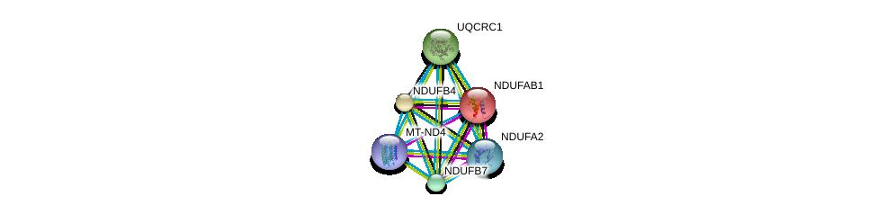 http://string-db.org/version_10/api/image/networkList?limit=0&targetmode=proteins&caller_identity=gene_cards&network_flavor=evidence&identifiers=9606.ENSP00000354961%0d%0a9606.ENSP00000252102%0d%0a9606.ENSP00000007516%0d%0a9606.ENSP00000184266%0d%0a9606.ENSP00000203407%0d%0a9606.ENSP00000215565%0d%0a