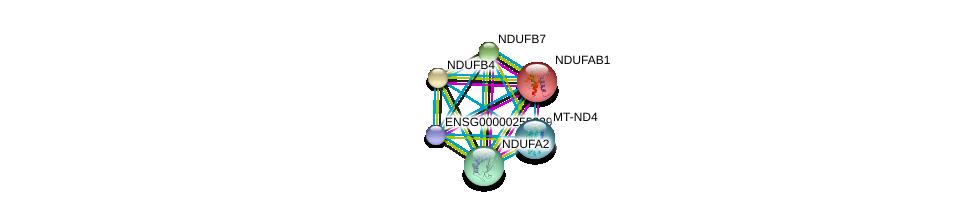 http://string-db.org/version_10/api/image/networkList?limit=0&targetmode=proteins&caller_identity=gene_cards&network_flavor=evidence&identifiers=9606.ENSP00000354961%0d%0a9606.ENSP00000252102%0d%0a9606.ENSP00000007516%0d%0a9606.ENSP00000456832%0d%0a9606.ENSP00000184266%0d%0a9606.ENSP00000215565%0d%0a