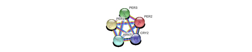 http://string-db.org/version_10/api/image/networkList?limit=0&targetmode=proteins&caller_identity=gene_cards&network_flavor=evidence&identifiers=9606.ENSP00000355031%0d%0a9606.ENSP00000314420%0d%0a9606.ENSP00000314420%0d%0a9606.ENSP00000254657%0d%0a9606.ENSP00000406751%0d%0a9606.ENSP00000374357%0d%0a