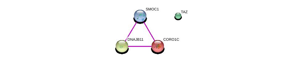 http://string-db.org/version_10/api/image/networkList?limit=0&targetmode=proteins&caller_identity=gene_cards&network_flavor=evidence&identifiers=9606.ENSP00000355110%0d%0a9606.ENSP00000261401%0d%0a9606.ENSP00000265028%0d%0a9606.ENSP00000299328%0d%0a