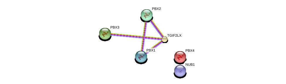 http://string-db.org/version_10/api/image/networkList?limit=0&targetmode=proteins&caller_identity=gene_cards&network_flavor=evidence&identifiers=9606.ENSP00000355119%0d%0a9606.ENSP00000362588%0d%0a9606.ENSP00000364190%0d%0a9606.ENSP00000251203%0d%0a9606.ENSP00000405890%0d%0a9606.ENSP00000457628%0d%0a