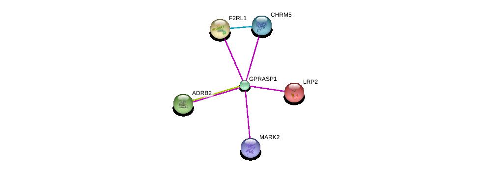 http://string-db.org/version_10/api/image/networkList?limit=0&targetmode=proteins&caller_identity=gene_cards&network_flavor=evidence&identifiers=9606.ENSP00000355146%0d%0a9606.ENSP00000385751%0d%0a9606.ENSP00000372750%0d%0a9606.ENSP00000263816%0d%0a9606.ENSP00000296677%0d%0a9606.ENSP00000305372%0d%0a