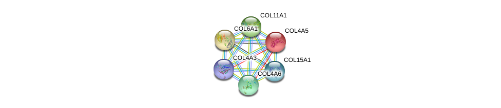 http://string-db.org/version_10/api/image/networkList?limit=0&targetmode=proteins&caller_identity=gene_cards&network_flavor=evidence&identifiers=9606.ENSP00000355180%0d%0a9606.ENSP00000364140%0d%0a9606.ENSP00000331902%0d%0a9606.ENSP00000359114%0d%0a9606.ENSP00000361290%0d%0a9606.ENSP00000379823%0d%0a