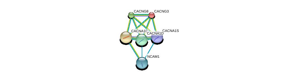 http://string-db.org/version_10/api/image/networkList?limit=0&targetmode=proteins&caller_identity=gene_cards&network_flavor=evidence&identifiers=9606.ENSP00000355192%0d%0a9606.ENSP00000005284%0d%0a9606.ENSP00000270458%0d%0a9606.ENSP00000288139%0d%0a9606.ENSP00000266376%0d%0a9606.ENSP00000318472%0d%0a