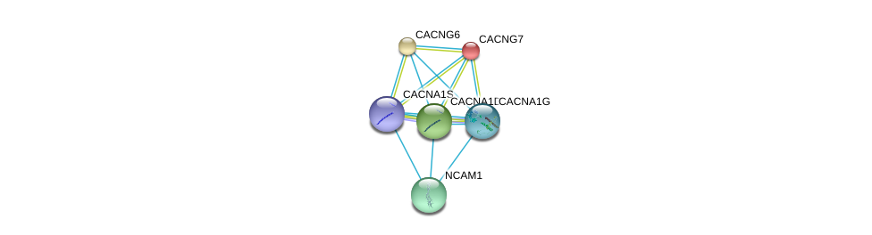 http://string-db.org/version_10/api/image/networkList?limit=0&targetmode=proteins&caller_identity=gene_cards&network_flavor=evidence&identifiers=9606.ENSP00000355192%0d%0a9606.ENSP00000222212%0d%0a9606.ENSP00000252729%0d%0a9606.ENSP00000288139%0d%0a9606.ENSP00000352011%0d%0a9606.ENSP00000318472%0d%0a