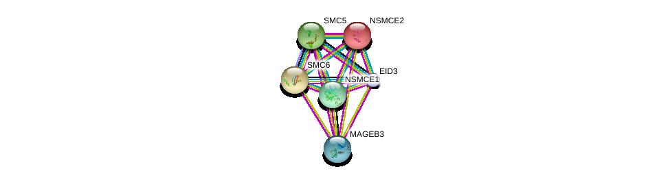 http://string-db.org/version_10/api/image/networkList?limit=0&targetmode=proteins&caller_identity=gene_cards&network_flavor=evidence&identifiers=9606.ENSP00000355198%0d%0a9606.ENSP00000354957%0d%0a9606.ENSP00000355077%0d%0a9606.ENSP00000323439%0d%0a9606.ENSP00000287437%0d%0a9606.ENSP00000435619%0d%0a