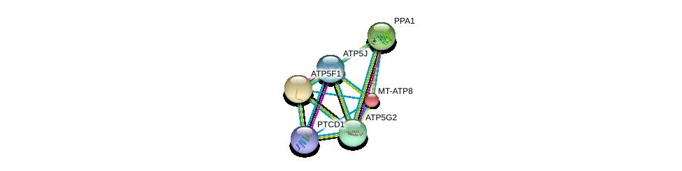 http://string-db.org/version_10/api/image/networkList?limit=0&targetmode=proteins&caller_identity=gene_cards&network_flavor=evidence&identifiers=9606.ENSP00000355265%0d%0a9606.ENSP00000450995%0d%0a9606.ENSP00000389649%0d%0a9606.ENSP00000377878%0d%0a9606.ENSP00000362329%0d%0a9606.ENSP00000358737%0d%0a