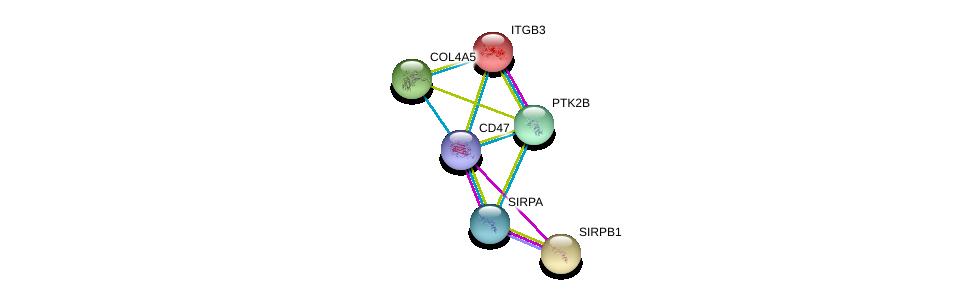http://string-db.org/version_10/api/image/networkList?limit=0&targetmode=proteins&caller_identity=gene_cards&network_flavor=evidence&identifiers=9606.ENSP00000355361%0d%0a9606.ENSP00000348307%0d%0a9606.ENSP00000262017%0d%0a9606.ENSP00000279477%0d%0a9606.ENSP00000331902%0d%0a9606.ENSP00000332816%0d%0a