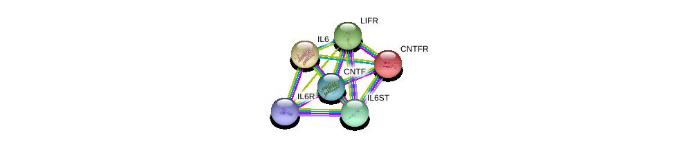 http://string-db.org/version_10/api/image/networkList?limit=0&targetmode=proteins&caller_identity=gene_cards&network_flavor=evidence&identifiers=9606.ENSP00000355370%0d%0a9606.ENSP00000242338%0d%0a9606.ENSP00000263409%0d%0a9606.ENSP00000357470%0d%0a9606.ENSP00000338799%0d%0a9606.ENSP00000258743%0d%0a