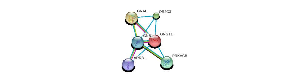 http://string-db.org/version_10/api/image/networkList?limit=0&targetmode=proteins&caller_identity=gene_cards&network_flavor=evidence&identifiers=9606.ENSP00000355443%0d%0a9606.ENSP00000334051%0d%0a9606.ENSP00000248572%0d%0a9606.ENSP00000367869%0d%0a9606.ENSP00000409581%0d%0a9606.ENSP00000359719%0d%0a