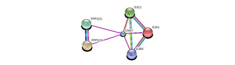 http://string-db.org/version_10/api/image/networkList?limit=0&targetmode=proteins&caller_identity=gene_cards&network_flavor=evidence&identifiers=9606.ENSP00000355470%0d%0a9606.ENSP00000335084%0d%0a9606.ENSP00000326031%0d%0a9606.ENSP00000282561%0d%0a9606.ENSP00000362460%0d%0a9606.ENSP00000333193%0d%0a