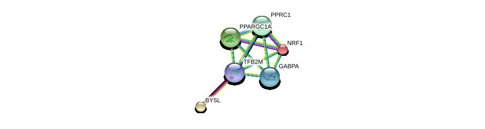http://string-db.org/version_10/api/image/networkList?limit=0&targetmode=proteins&caller_identity=gene_cards&network_flavor=evidence&identifiers=9606.ENSP00000355471%0d%0a9606.ENSP00000264867%0d%0a9606.ENSP00000346886%0d%0a9606.ENSP00000278070%0d%0a9606.ENSP00000223190%0d%0a9606.ENSP00000230340%0d%0a