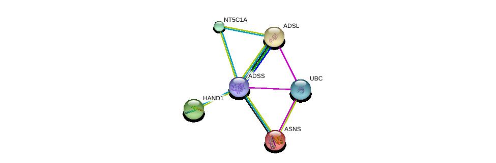http://string-db.org/version_10/api/image/networkList?limit=0&targetmode=proteins&caller_identity=gene_cards&network_flavor=evidence&identifiers=9606.ENSP00000355493%0d%0a9606.ENSP00000344818%0d%0a9606.ENSP00000175506%0d%0a9606.ENSP00000216194%0d%0a9606.ENSP00000231121%0d%0a9606.ENSP00000235628%0d%0a