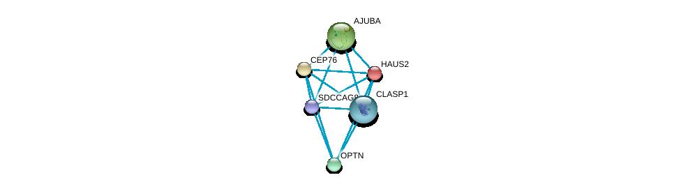 http://string-db.org/version_10/api/image/networkList?limit=0&targetmode=proteins&caller_identity=gene_cards&network_flavor=evidence&identifiers=9606.ENSP00000355499%0d%0a9606.ENSP00000260372%0d%0a9606.ENSP00000262127%0d%0a9606.ENSP00000262713%0d%0a9606.ENSP00000263036%0d%0a9606.ENSP00000263710%0d%0a