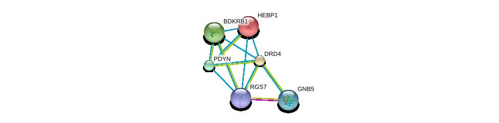 http://string-db.org/version_10/api/image/networkList?limit=0&targetmode=proteins&caller_identity=gene_cards&network_flavor=evidence&identifiers=9606.ENSP00000355523%0d%0a9606.ENSP00000261837%0d%0a9606.ENSP00000014930%0d%0a9606.ENSP00000176183%0d%0a9606.ENSP00000216629%0d%0a9606.ENSP00000217305%0d%0a