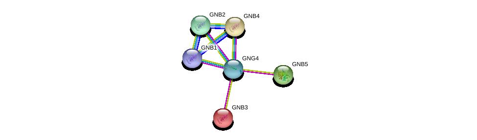 http://string-db.org/version_10/api/image/networkList?limit=0&targetmode=proteins&caller_identity=gene_cards&network_flavor=evidence&identifiers=9606.ENSP00000355556%0d%0a9606.ENSP00000232564%0d%0a9606.ENSP00000261837%0d%0a9606.ENSP00000305260%0d%0a9606.ENSP00000367869%0d%0a9606.ENSP00000229264%0d%0a