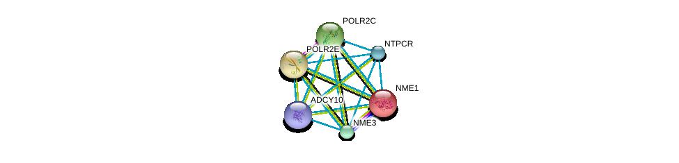 http://string-db.org/version_10/api/image/networkList?limit=0&targetmode=proteins&caller_identity=gene_cards&network_flavor=evidence&identifiers=9606.ENSP00000355587%0d%0a9606.ENSP00000356825%0d%0a9606.ENSP00000013034%0d%0a9606.ENSP00000215587%0d%0a9606.ENSP00000219252%0d%0a9606.ENSP00000219302%0d%0a