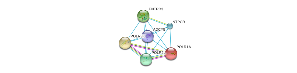 http://string-db.org/version_10/api/image/networkList?limit=0&targetmode=proteins&caller_identity=gene_cards&network_flavor=evidence&identifiers=9606.ENSP00000355587%0d%0a9606.ENSP00000419361%0d%0a9606.ENSP00000301825%0d%0a9606.ENSP00000293860%0d%0a9606.ENSP00000263857%0d%0a9606.ENSP00000324124%0d%0a