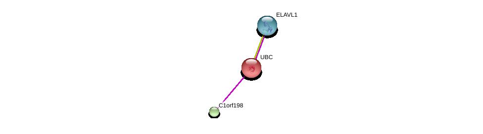 http://string-db.org/version_10/api/image/networkList?limit=0&targetmode=proteins&caller_identity=gene_cards&network_flavor=evidence&identifiers=9606.ENSP00000355623%0d%0a9606.ENSP00000344818%0d%0a9606.ENSP00000385269%0d%0a