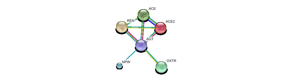 http://string-db.org/version_10/api/image/networkList?limit=0&targetmode=proteins&caller_identity=gene_cards&network_flavor=evidence&identifiers=9606.ENSP00000355627%0d%0a9606.ENSP00000272190%0d%0a9606.ENSP00000290866%0d%0a9606.ENSP00000252519%0d%0a9606.ENSP00000330070%0d%0a9606.ENSP00000324270%0d%0a