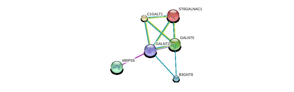 http://string-db.org/version_10/api/image/networkList?limit=0&targetmode=proteins&caller_identity=gene_cards&network_flavor=evidence&identifiers=9606.ENSP00000355632%0d%0a9606.ENSP00000272418%0d%0a9606.ENSP00000223122%0d%0a9606.ENSP00000312700%0d%0a9606.ENSP00000156626%0d%0a9606.ENSP00000259056%0d%0a