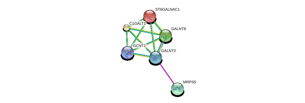 http://string-db.org/version_10/api/image/networkList?limit=0&targetmode=proteins&caller_identity=gene_cards&network_flavor=evidence&identifiers=9606.ENSP00000355632%0d%0a9606.ENSP00000272418%0d%0a9606.ENSP00000365920%0d%0a9606.ENSP00000156626%0d%0a9606.ENSP00000223122%0d%0a9606.ENSP00000252318%0d%0a