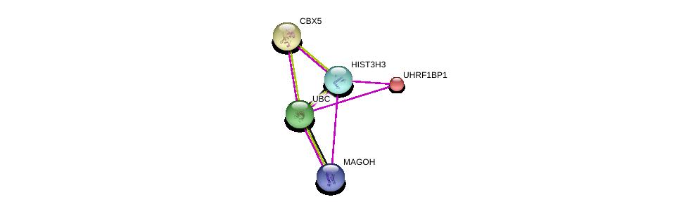 http://string-db.org/version_10/api/image/networkList?limit=0&targetmode=proteins&caller_identity=gene_cards&network_flavor=evidence&identifiers=9606.ENSP00000355657%0d%0a9606.ENSP00000344818%0d%0a9606.ENSP00000360525%0d%0a9606.ENSP00000209875%0d%0a9606.ENSP00000209875%0d%0a9606.ENSP00000192788%0d%0a