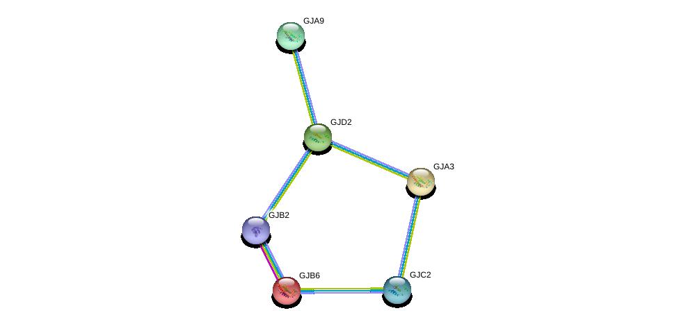 http://string-db.org/version_10/api/image/networkList?limit=0&targetmode=proteins&caller_identity=gene_cards&network_flavor=evidence&identifiers=9606.ENSP00000355675%0d%0a9606.ENSP00000241125%0d%0a9606.ENSP00000290374%0d%0a9606.ENSP00000372295%0d%0a9606.ENSP00000241124%0d%0a9606.ENSP00000350415%0d%0a