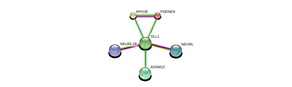 http://string-db.org/version_10/api/image/networkList?limit=0&targetmode=proteins&caller_identity=gene_cards&network_flavor=evidence&identifiers=9606.ENSP00000355718%0d%0a9606.ENSP00000358815%0d%0a9606.ENSP00000358795%0d%0a9606.ENSP00000357668%0d%0a9606.ENSP00000222266%0d%0a9606.ENSP00000261879%0d%0a