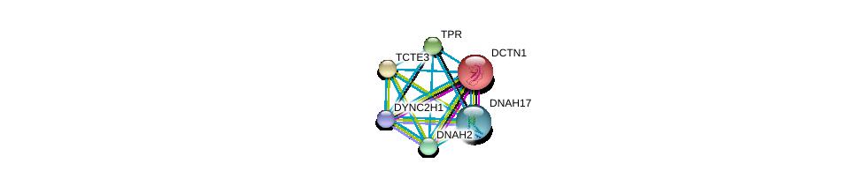 http://string-db.org/version_10/api/image/networkList?limit=0&targetmode=proteins&caller_identity=gene_cards&network_flavor=evidence&identifiers=9606.ENSP00000355736%0d%0a9606.ENSP00000354791%0d%0a9606.ENSP00000356448%0d%0a9606.ENSP00000373825%0d%0a9606.ENSP00000374490%0d%0a9606.ENSP00000381167%0d%0a