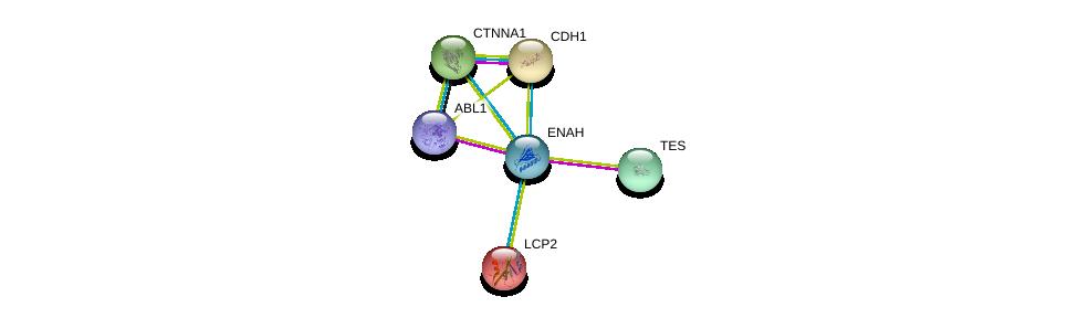 http://string-db.org/version_10/api/image/networkList?limit=0&targetmode=proteins&caller_identity=gene_cards&network_flavor=evidence&identifiers=9606.ENSP00000355809%0d%0a9606.ENSP00000350937%0d%0a9606.ENSP00000361423%0d%0a9606.ENSP00000304669%0d%0a9606.ENSP00000261769%0d%0a9606.ENSP00000046794%0d%0a