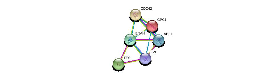 http://string-db.org/version_10/api/image/networkList?limit=0&targetmode=proteins&caller_identity=gene_cards&network_flavor=evidence&identifiers=9606.ENSP00000355809%0d%0a9606.ENSP00000350937%0d%0a9606.ENSP00000361423%0d%0a9606.ENSP00000376652%0d%0a9606.ENSP00000264039%0d%0a9606.ENSP00000314458%0d%0a