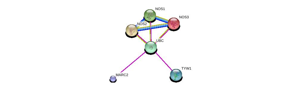 http://string-db.org/version_10/api/image/networkList?limit=0&targetmode=proteins&caller_identity=gene_cards&network_flavor=evidence&identifiers=9606.ENSP00000355880%0d%0a9606.ENSP00000344818%0d%0a9606.ENSP00000352645%0d%0a9606.ENSP00000337459%0d%0a9606.ENSP00000297494%0d%0a9606.ENSP00000327251%0d%0a