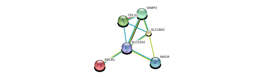http://string-db.org/version_10/api/image/networkList?limit=0&targetmode=proteins&caller_identity=gene_cards&network_flavor=evidence&identifiers=9606.ENSP00000355920%0d%0a9606.ENSP00000340684%0d%0a9606.ENSP00000314214%0d%0a9606.ENSP00000305613%0d%0a9606.ENSP00000298472%0d%0a9606.ENSP00000265724%0d%0a