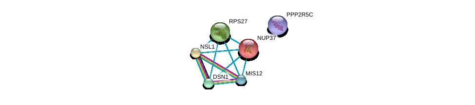 http://string-db.org/version_10/api/image/networkList?limit=0&targetmode=proteins&caller_identity=gene_cards&network_flavor=evidence&identifiers=9606.ENSP00000355944%0d%0a9606.ENSP00000362850%0d%0a9606.ENSP00000370557%0d%0a9606.ENSP00000251074%0d%0a9606.ENSP00000357555%0d%0a9606.ENSP00000412324%0d%0a