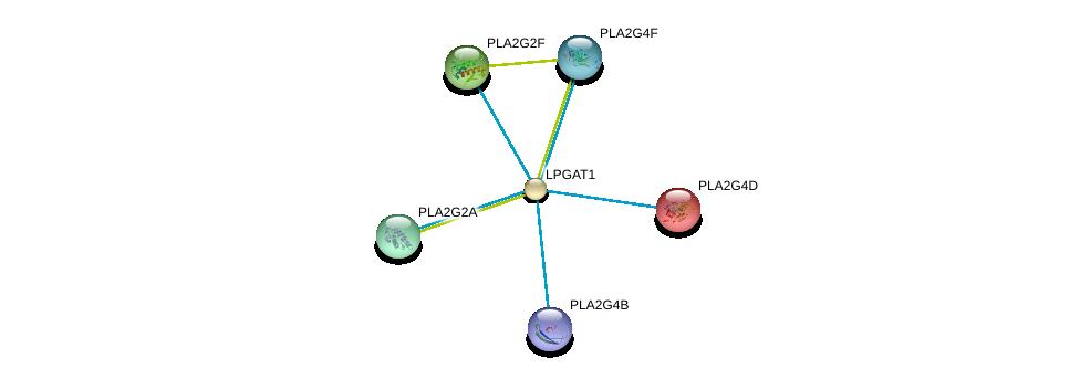 http://string-db.org/version_10/api/image/networkList?limit=0&targetmode=proteins&caller_identity=gene_cards&network_flavor=evidence&identifiers=9606.ENSP00000355963%0d%0a9606.ENSP00000290472%0d%0a9606.ENSP00000364252%0d%0a9606.ENSP00000364243%0d%0a9606.ENSP00000371833%0d%0a9606.ENSP00000396045%0d%0a