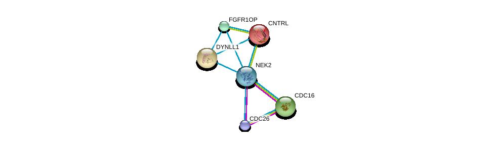 http://string-db.org/version_10/api/image/networkList?limit=0&targetmode=proteins&caller_identity=gene_cards&network_flavor=evidence&identifiers=9606.ENSP00000355966%0d%0a9606.ENSP00000348554%0d%0a9606.ENSP00000363322%0d%0a9606.ENSP00000355812%0d%0a9606.ENSP00000238341%0d%0a9606.ENSP00000242577%0d%0a