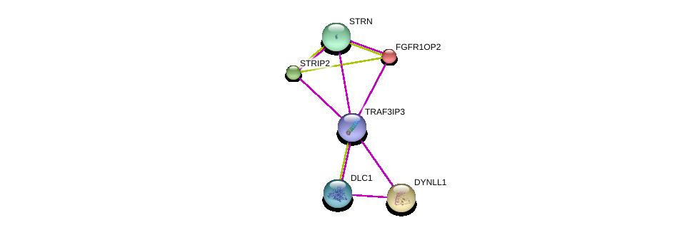 http://string-db.org/version_10/api/image/networkList?limit=0&targetmode=proteins&caller_identity=gene_cards&network_flavor=evidence&identifiers=9606.ENSP00000355991%0d%0a9606.ENSP00000229395%0d%0a9606.ENSP00000242577%0d%0a9606.ENSP00000249344%0d%0a9606.ENSP00000263918%0d%0a9606.ENSP00000276297%0d%0a