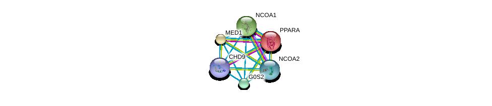 http://string-db.org/version_10/api/image/networkList?limit=0&targetmode=proteins&caller_identity=gene_cards&network_flavor=evidence&identifiers=9606.ENSP00000355996%0d%0a9606.ENSP00000300651%0d%0a9606.ENSP00000399968%0d%0a9606.ENSP00000262735%0d%0a9606.ENSP00000455307%0d%0a9606.ENSP00000320940%0d%0a