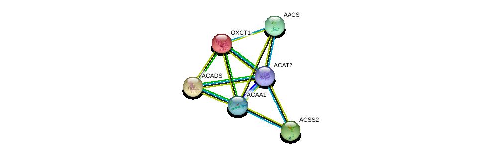 http://string-db.org/version_10/api/image/networkList?limit=0&targetmode=proteins&caller_identity=gene_cards&network_flavor=evidence&identifiers=9606.ENSP00000356015%0d%0a9606.ENSP00000324842%0d%0a9606.ENSP00000333664%0d%0a9606.ENSP00000196371%0d%0a9606.ENSP00000242592%0d%0a9606.ENSP00000253382%0d%0a
