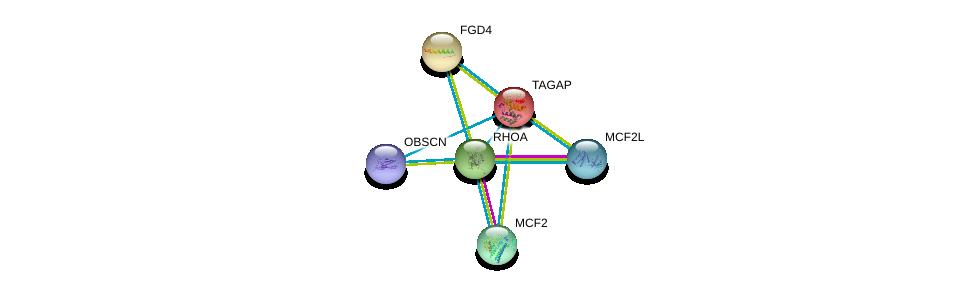 http://string-db.org/version_10/api/image/networkList?limit=0&targetmode=proteins&caller_identity=gene_cards&network_flavor=evidence&identifiers=9606.ENSP00000356033%0d%0a9606.ENSP00000400175%0d%0a9606.ENSP00000394487%0d%0a9606.ENSP00000430276%0d%0a9606.ENSP00000440374%0d%0a9606.ENSP00000455507%0d%0a