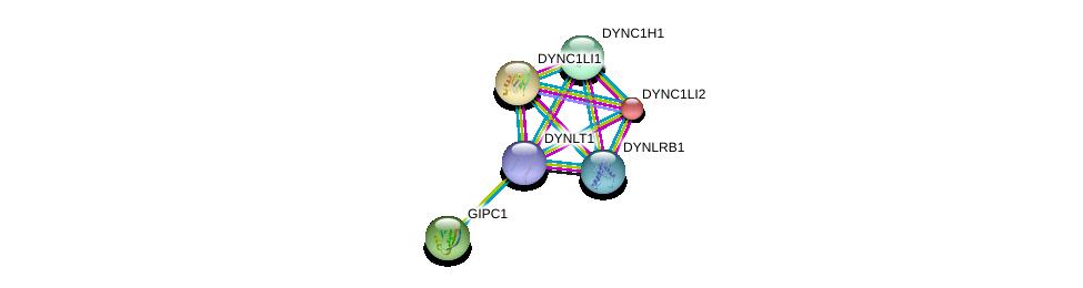 http://string-db.org/version_10/api/image/networkList?limit=0&targetmode=proteins&caller_identity=gene_cards&network_flavor=evidence&identifiers=9606.ENSP00000356056%0d%0a9606.ENSP00000258198%0d%0a9606.ENSP00000273130%0d%0a9606.ENSP00000348965%0d%0a9606.ENSP00000349679%0d%0a9606.ENSP00000340698%0d%0a