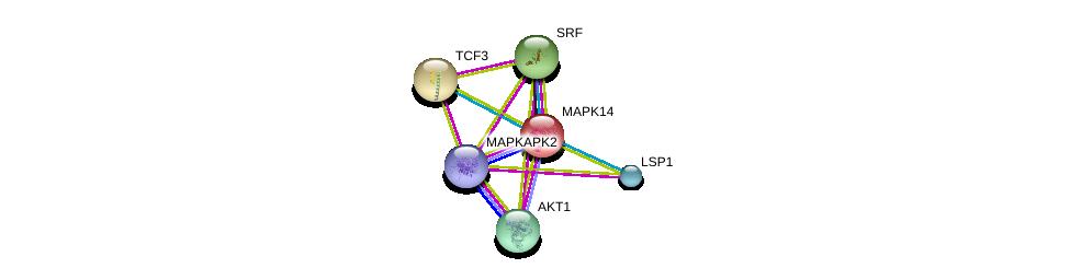 http://string-db.org/version_10/api/image/networkList?limit=0&targetmode=proteins&caller_identity=gene_cards&network_flavor=evidence&identifiers=9606.ENSP00000356070%0d%0a9606.ENSP00000229794%0d%0a9606.ENSP00000262965%0d%0a9606.ENSP00000265354%0d%0a9606.ENSP00000270202%0d%0a9606.ENSP00000308383%0d%0a
