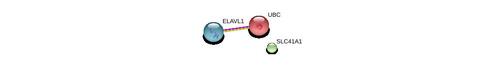 http://string-db.org/version_10/api/image/networkList?limit=0&targetmode=proteins&caller_identity=gene_cards&network_flavor=evidence&identifiers=9606.ENSP00000356105%0d%0a9606.ENSP00000385269%0d%0a9606.ENSP00000344818%0d%0a