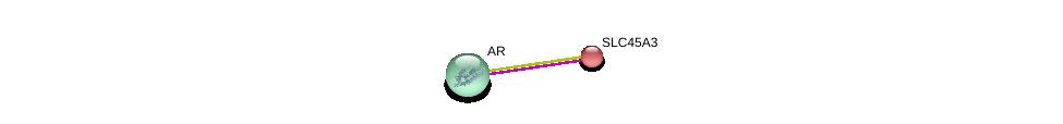 http://string-db.org/version_10/api/image/networkList?limit=0&targetmode=proteins&caller_identity=gene_cards&network_flavor=evidence&identifiers=9606.ENSP00000356113%0d%0a9606.ENSP00000363822%0d%0a
